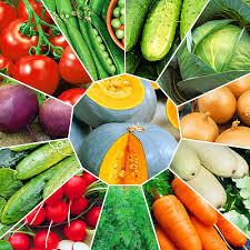 Как правильно выбрать семена для посева